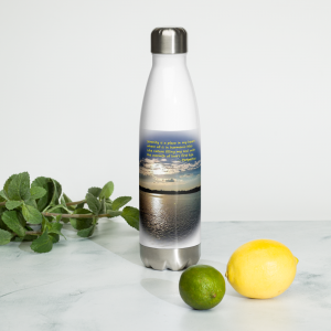 stainless-steel-water-bottle-white-17oz-front-2-60f0022254af4.png